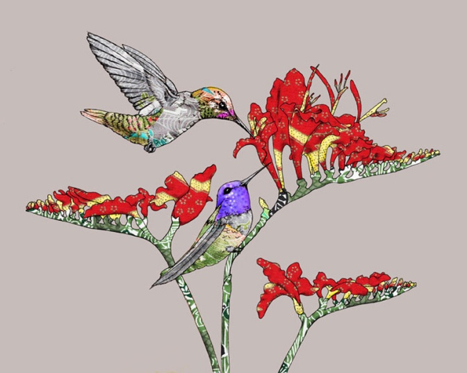 Anna's-Hummingbirds-web