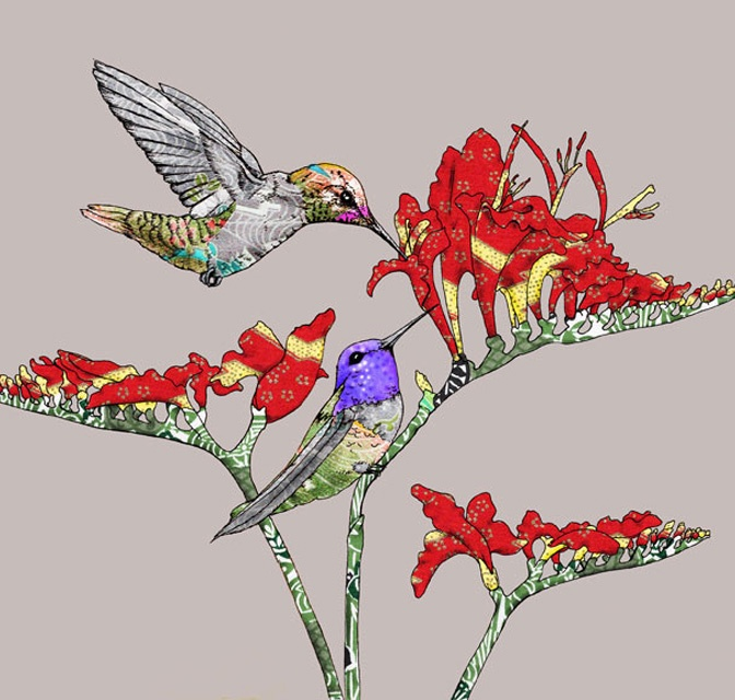 Anna's-Hummingbirds-web