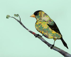 Pamela Kirton's Goldfinch